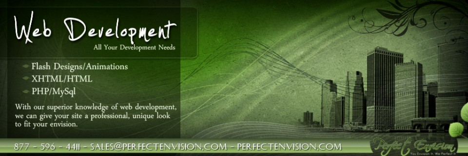 Perfect Envision Web Development Banner