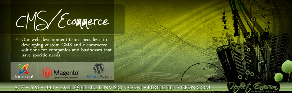 Perfect Envision CMS Ecommerce Banner